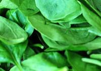 Špenátové smoothie recept