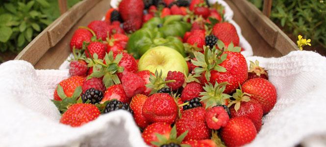 Letní jahodo-ostružino-malinové smoothie