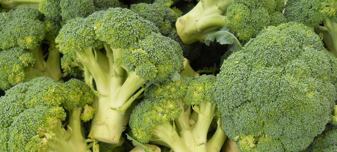 Zelená brokolice